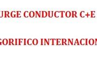 BUSCO CONDUCTOR C+E -- INTERNACIONAL FRIGORIFICO